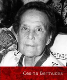 SELO-CESINA-BERMUDESA