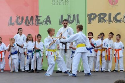 karate-502384_960_720